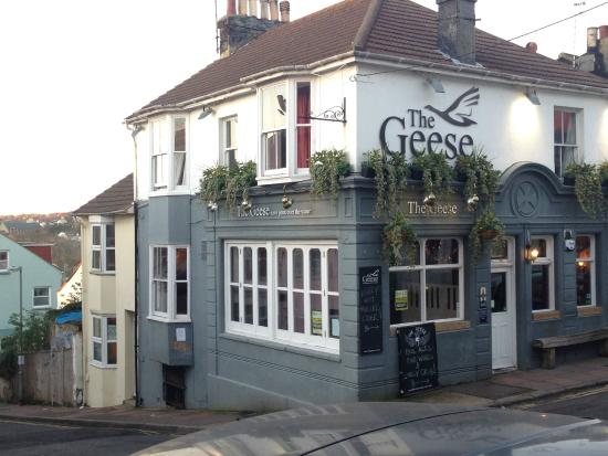 The Geese, Hanover, Brighton.