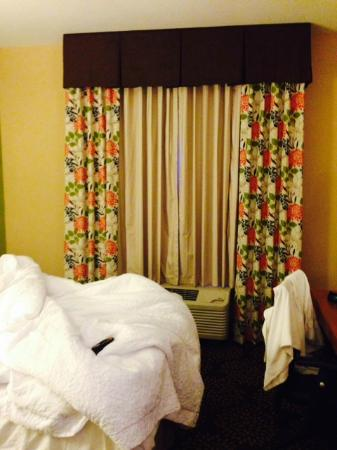 Hampton Inn & Suites Harlingen: Room