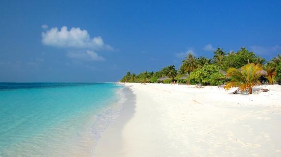 كوريدو: En frodig ø