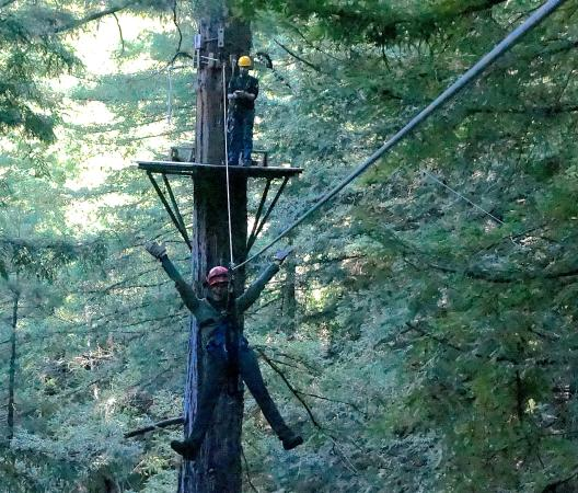 Sonoma Canopy Tours Mugging for the camera. & Mugging for the camera. - Picture of Sonoma Canopy Tours Occidental ...