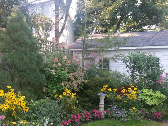 Ivy Tree Inn and Garden : Steve's Master Garden