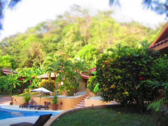 Hotel Ritmo Tropical: Looking towards the pool and other bungalows from our room