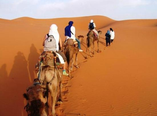 Sahara Gate Tours