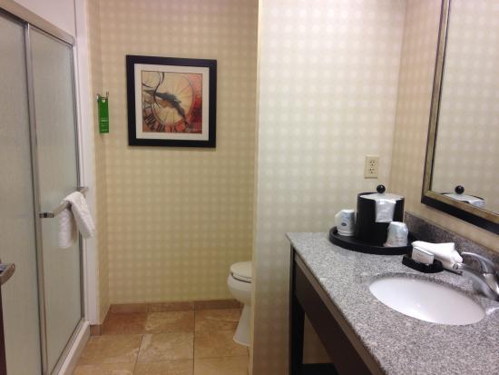 Hampton Inn and Suites Detroit/Airport-Romulus: Bathroom
