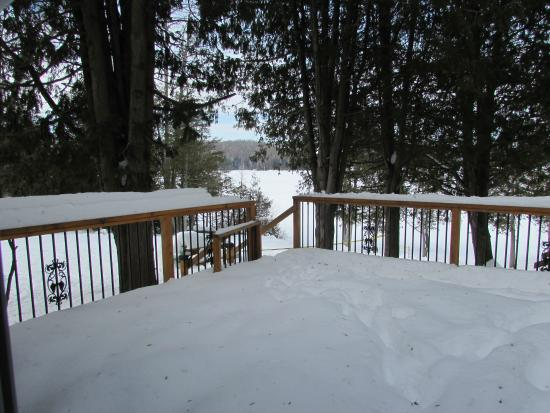 Blue Moon Retreat: View from Master Bedroom