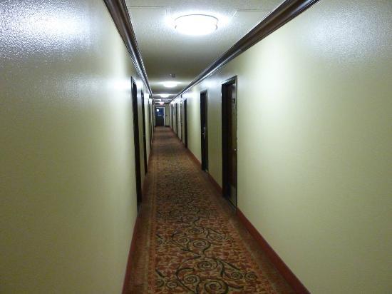 Super 8 Chico: Super 8 hallway