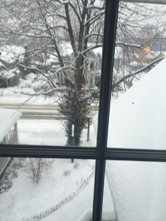 Artists Colony Inn : Our room view after the snow - such a pretty sight to wake up to