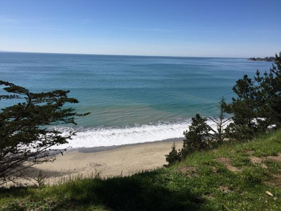 Manresa State Beach: Pic taken from campground , not very busy , nice !!!