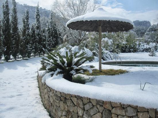Dalt Muntanya: inverno