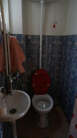 Double Door Hostel: Bathroom