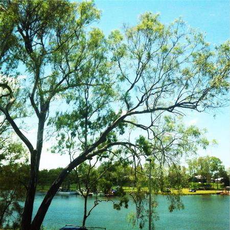 Bundaberg Services Club: Lunch view from a table right on the river.