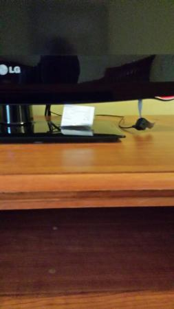 Baymont Inn & Suites Galloway Atlantic City Area: A receipt left under the tv. Obviously nobody cleaned this room