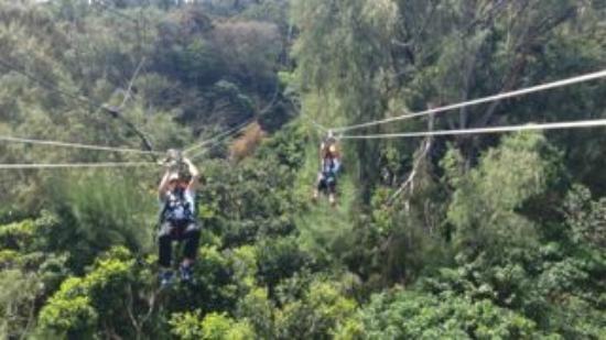 Zipline Big Island Tripadvisor