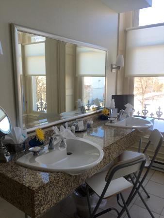 The Mansion on Delaware Avenue : Bathroom