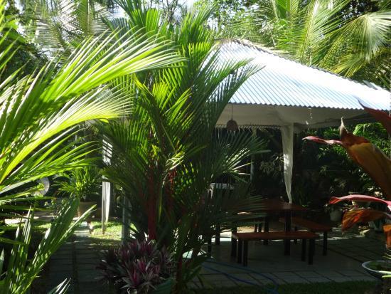 White Villa Guesthouse: Беседка