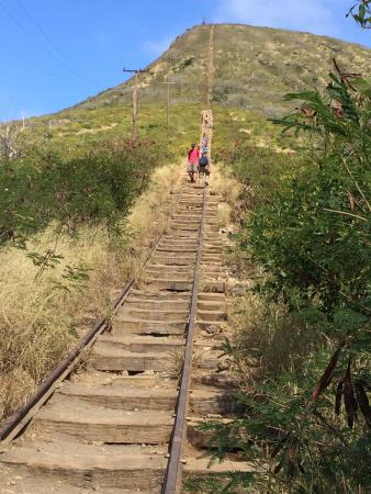 Koko Crater Trail: Don't be intimidated by this.