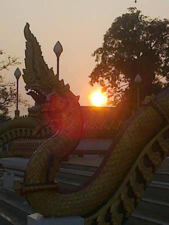Khon Kaen Orchid: Wat Nong Wang in the morning