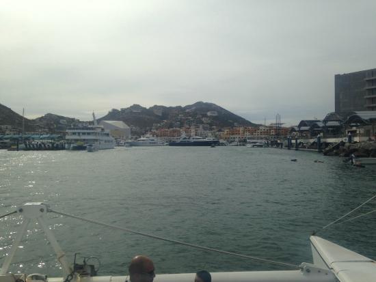 La Princesa Catamaran: coming back into the marina