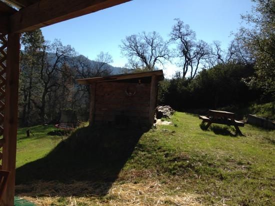 Evergreen Haus: View from Sequoia room patio