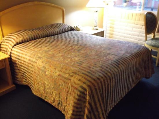 Leisure Inn Canyonville Motel: Queen Size bed