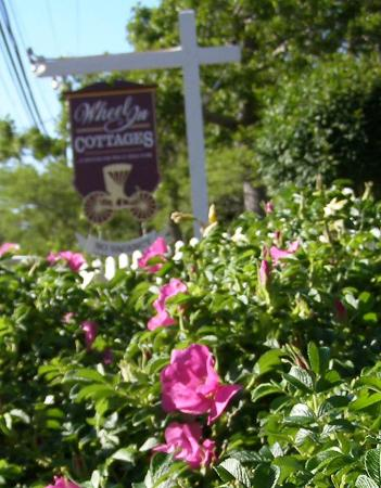 Wheel In Cottages: We are located conveniently along Rt 6 in North Eastham