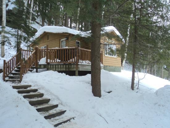woodpecker cabin picture of cedar grove lodge. Black Bedroom Furniture Sets. Home Design Ideas