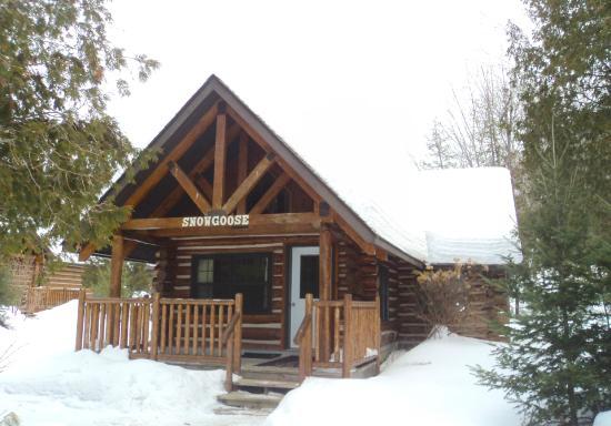 red robin cabin picture of cedar grove lodge huntsville. Black Bedroom Furniture Sets. Home Design Ideas