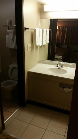 Knights Inn Detroit Area/Farmington Hills: Sink