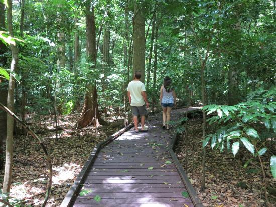 Alstonville, Australia: Board walk