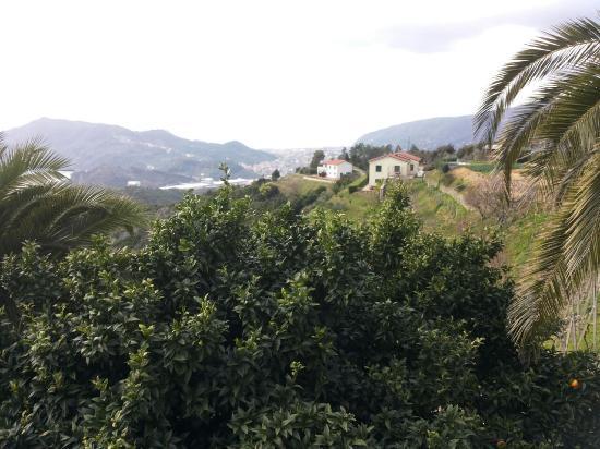Agriturismo Villa Casaggiori: la vista 2