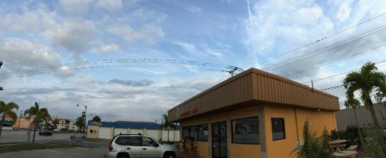 Kt Vietnamese Cafe: Birds on the Wires like the (pan)aroma