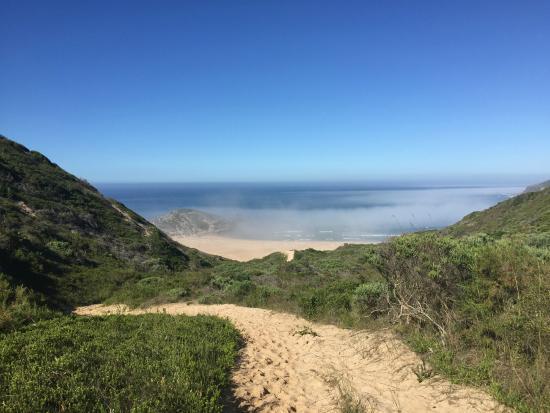 Plettenberg Bay, Sudáfrica: RNR