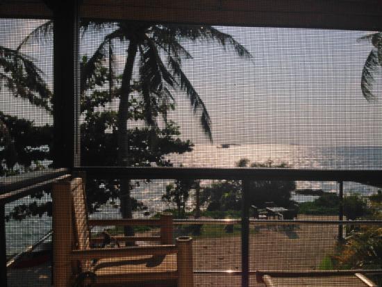 Chills Resort: Mosquito net! :)