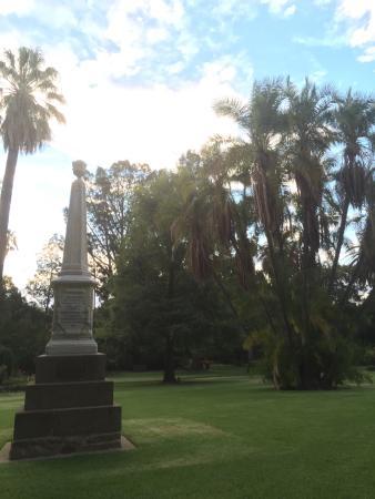 Albury Botanic Garden: View from the grass