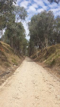 High Country Rail Trail