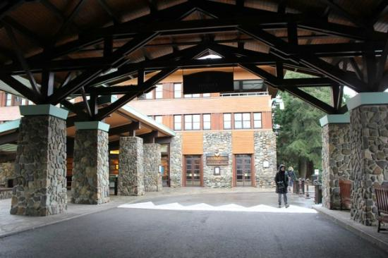 La piscine photo de disney 39 s sequoia lodge coupvray for Piscine sequoia lodge