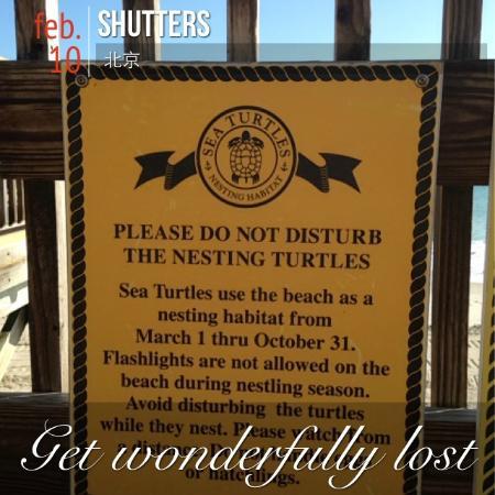迪士尼维罗海滩度假酒店照片