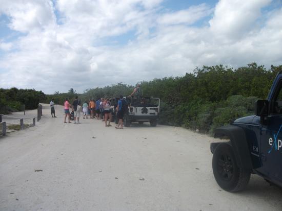 Notre arrêt à Laguna Colombia pour voir les crocodiles