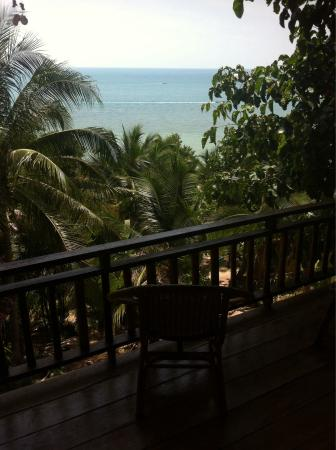 Room 205 View