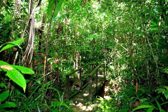 Reserva Kahka Creek