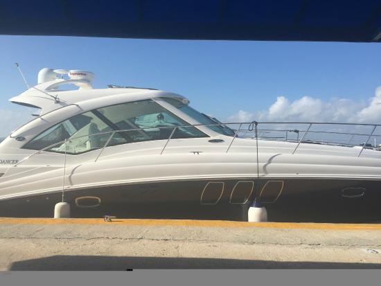 Complimentary Yacht