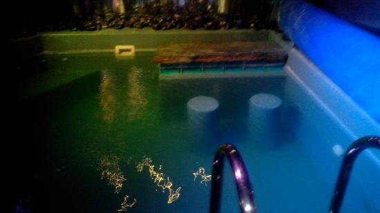 Bubble Lounge Hotel: piscine crazy vegas