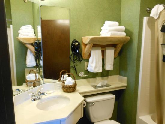 Stoney Creek Hotel & Conference Center - La Crosse : Very clean!
