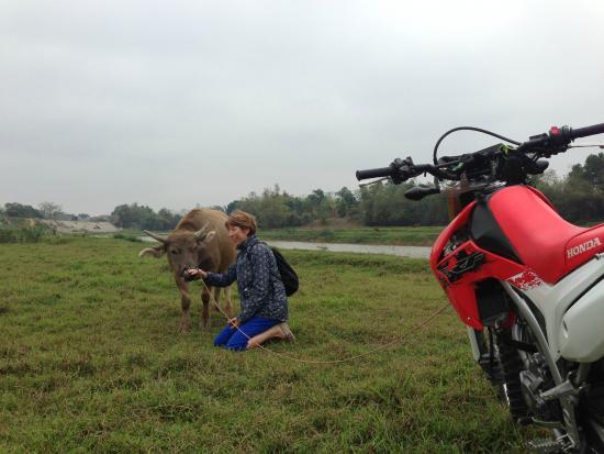 Hanoï, Vietnam : Hanoi motorbike trips