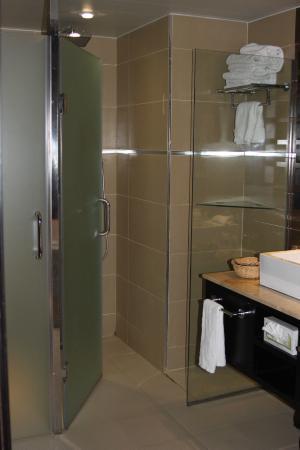 Punta Cana Princess All Suites Resort & Spa: Shower