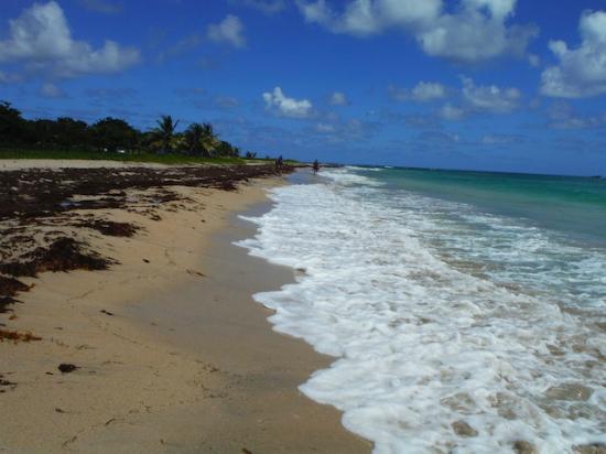 Villawellness St. Lucia: The beach