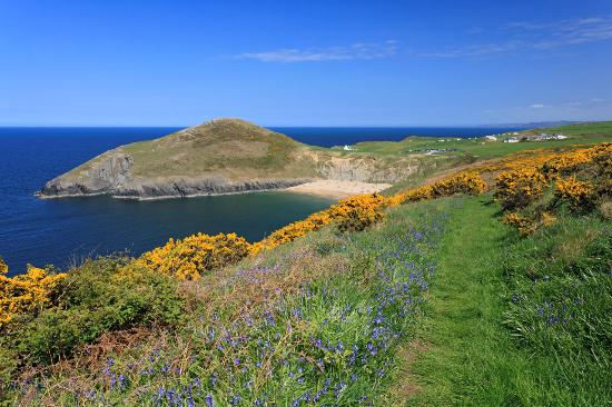 Troedyrhiw Holiday Cottages: Mwnt beach