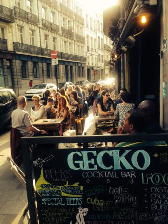 Gecko Cocktail Bar