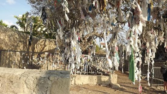 St. Solomon's Catacombs : The tree of wishes