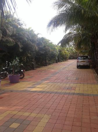 Anand Resorts : Parking area.